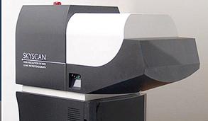 Micro-CT in-vivo 3D imaging