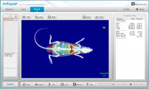 Body composition of a rat, DEXA InAlyzer study