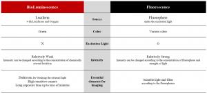 Comparison of bioiluminescence and fluorescence imaging